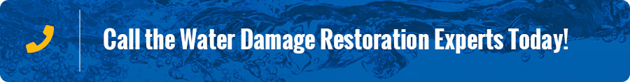 Temple Terrace FL Sewage Cleanup Services